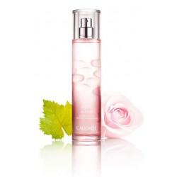 Caudalie Eau Fraiche Rose de Vigne 50 ml Acqua Profumata alla Rosa di Vite